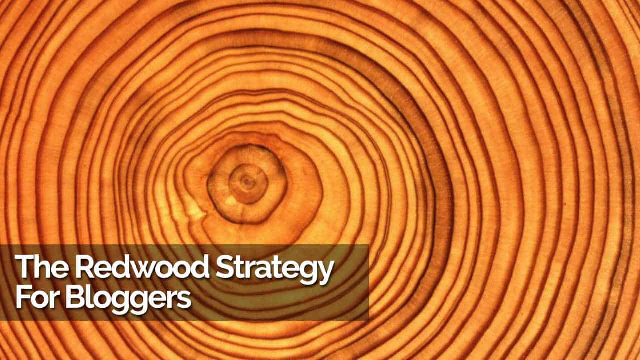 The Redwood Strategy For Bloggers